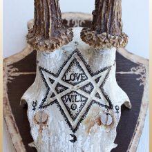lovewill2